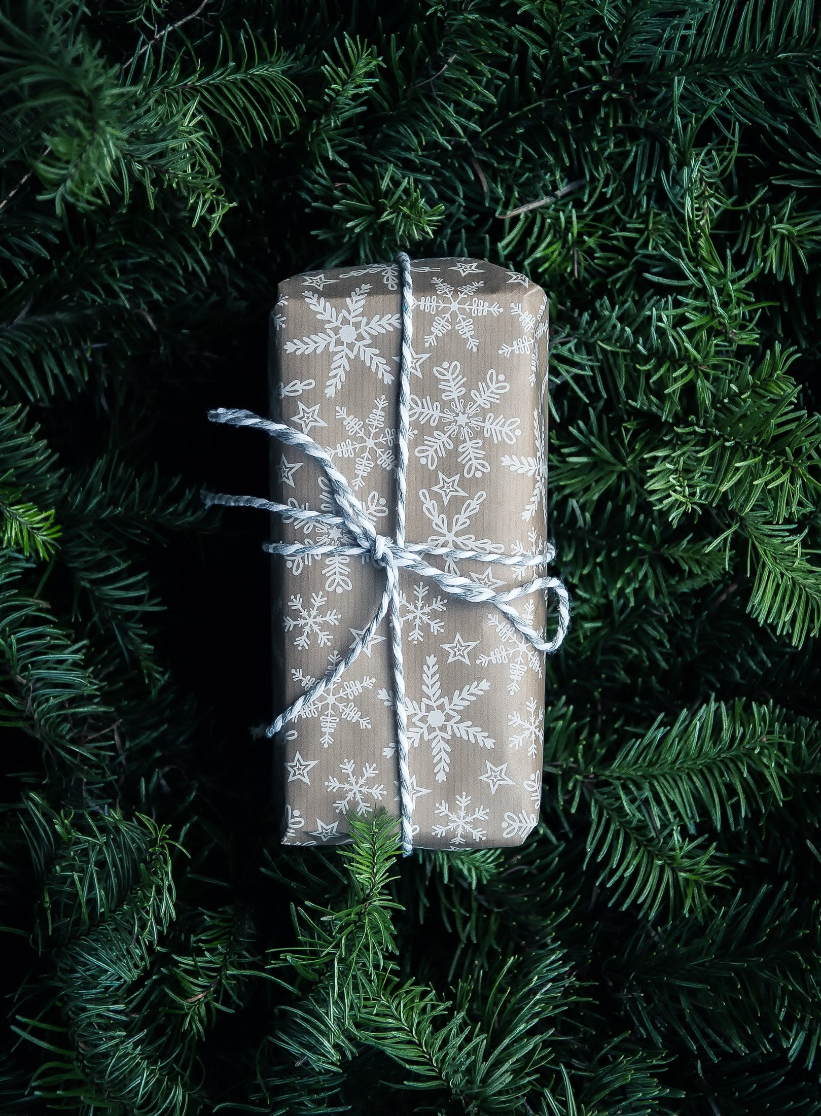 Free stock photo of holiday, tree, gift, christmas