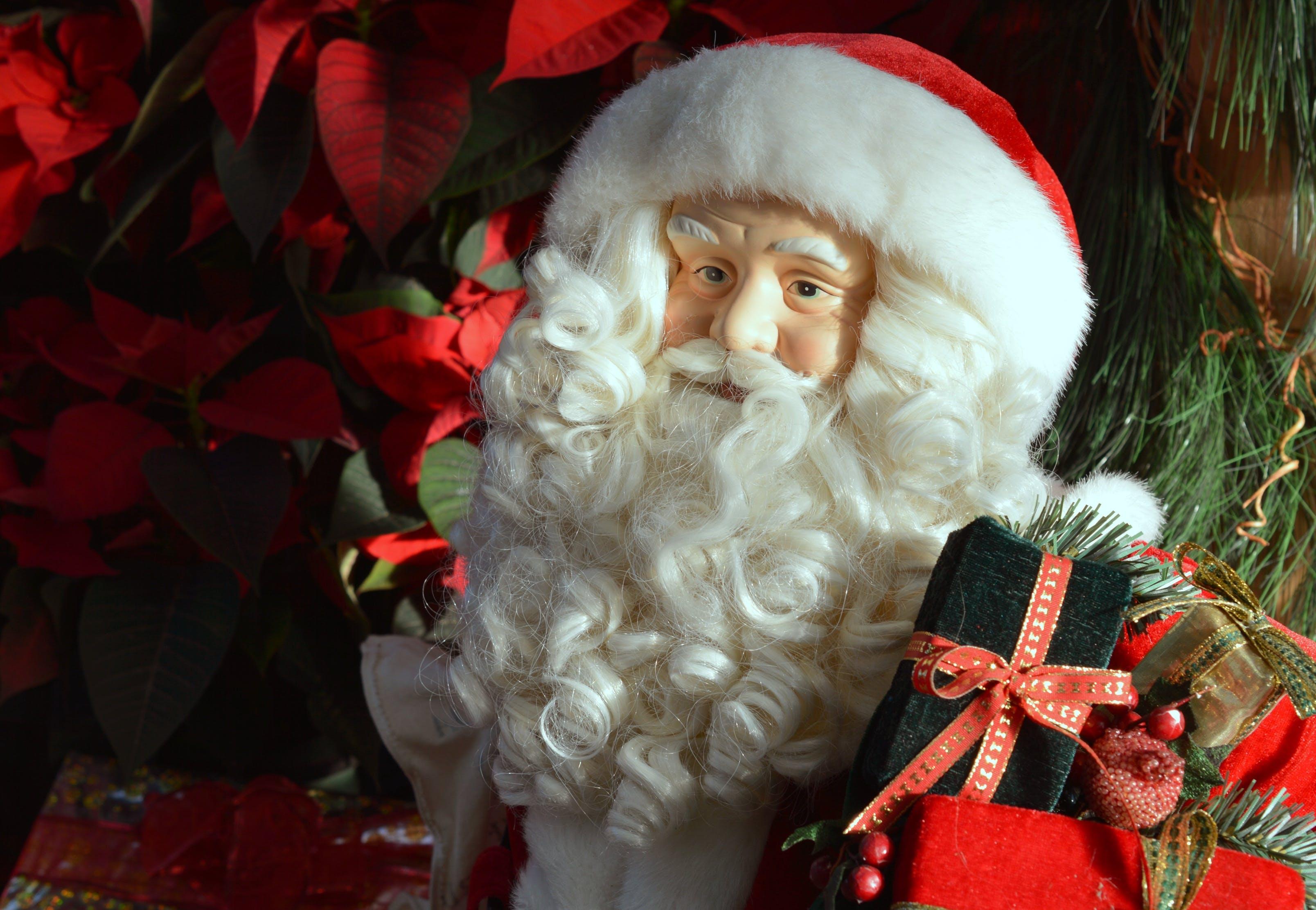 Free stock photo of holiday, festive, winter, christmas