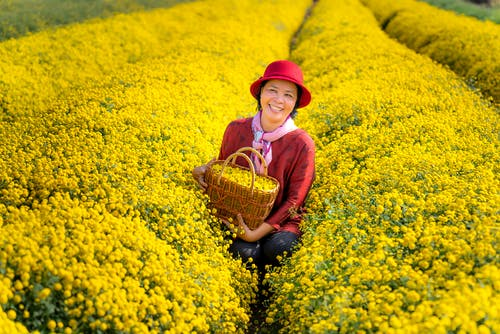 Woman Carrying Basket Filled With Yellow Flowers