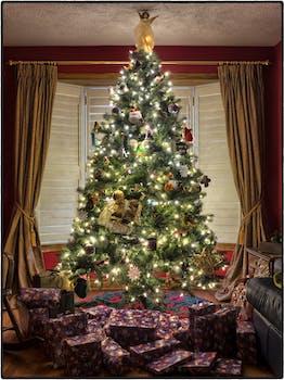 turned on string lights christmas tree - Christmas Tree Images Free