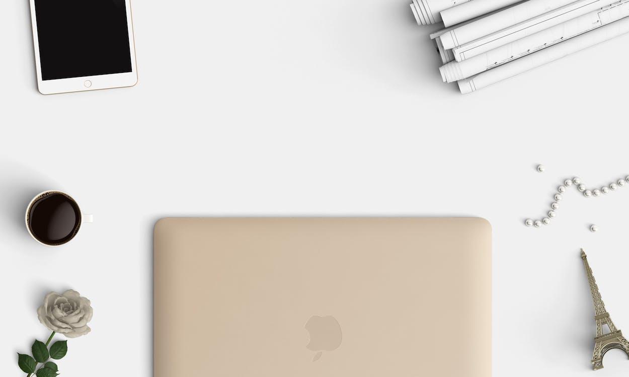 기술, 꽃, 노트북