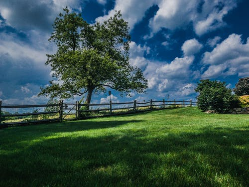 Free stock photo of field, grass, landscape, sky