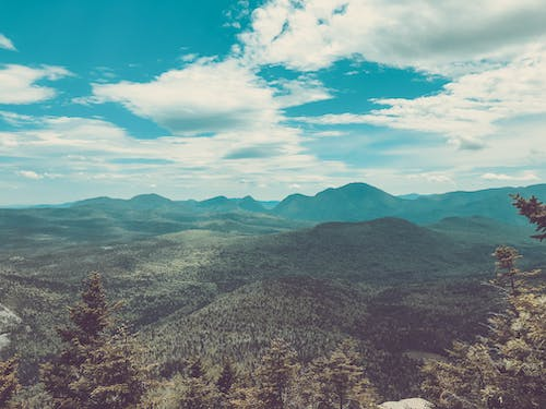 Free stock photo of forest, hills, matte, mountains