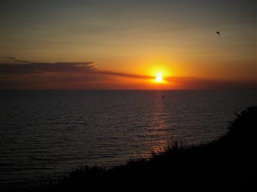 傍晚的太陽, 夏天, 夏季 的 免費圖庫相片