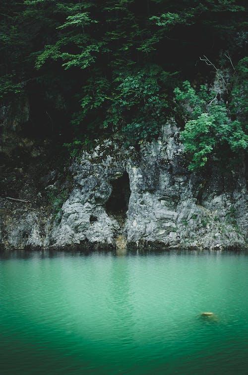 Immagine gratuita di acqua azzurra, foresta, grotta, lago