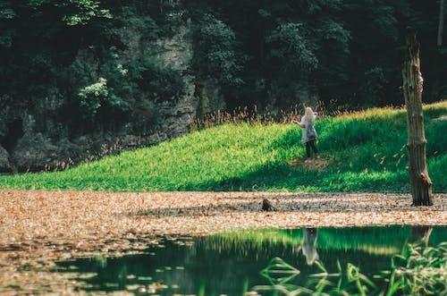 Immagine gratuita di foglie cadute, lago, montagna, ragazza