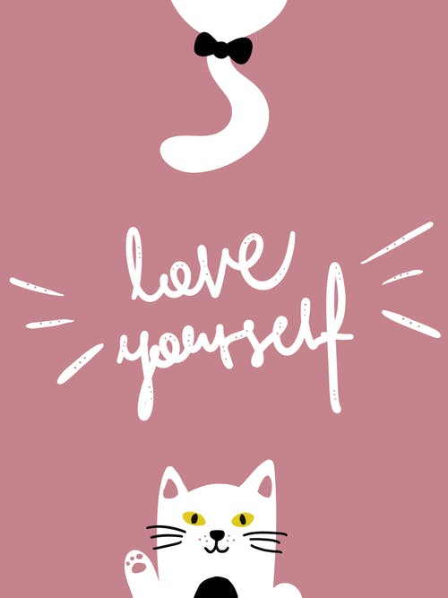 Free stock photo of domestic cat, drawing, love, typography