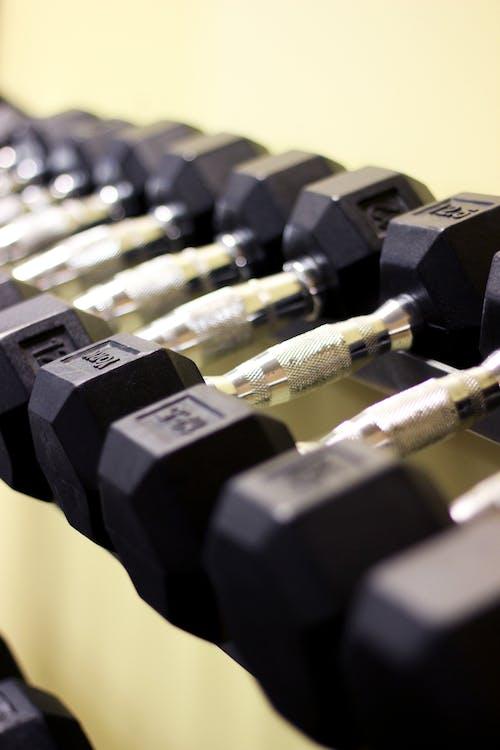 健身器材, 健身房, 啞鈴, 很重的 的 免费素材照片