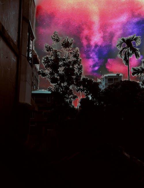 Foto d'estoc gratuïta de #mobilechallenge, artista del carrer, càmera Nikon, fanal cel