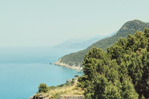 Darmowe zdjęcie z galerii z drzewa, drzewo, góra, góry