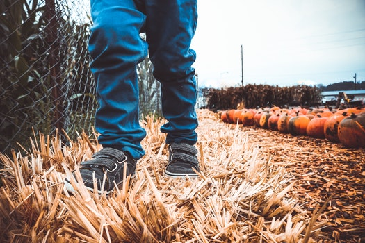 Free stock photo of person, jeans, shoes, autumn