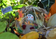 hat, harvest, autumn