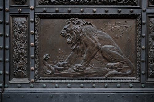 Бесплатное стоковое фото с дверь, змея, Искусство, лев