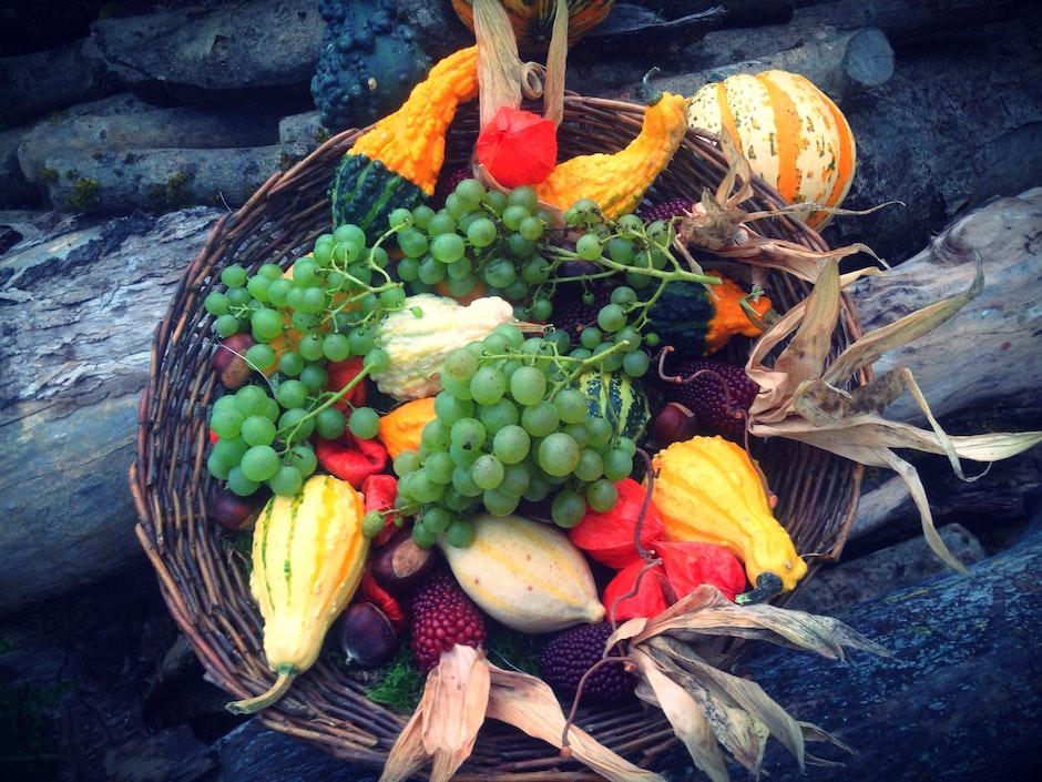 abundance, agriculture, autumn decoration
