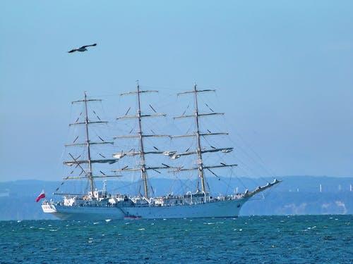 Photos gratuites de embarcation, mer, naviguer, navire
