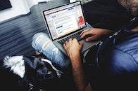man, person, laptop