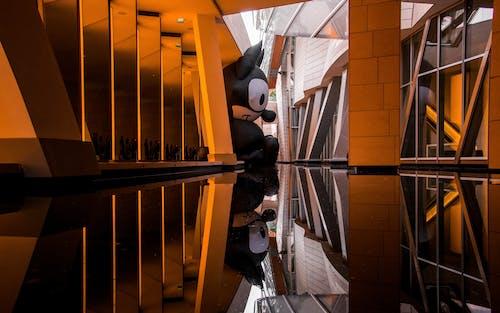 symetry, 博物館, 巴黎, 貓 的 免費圖庫相片
