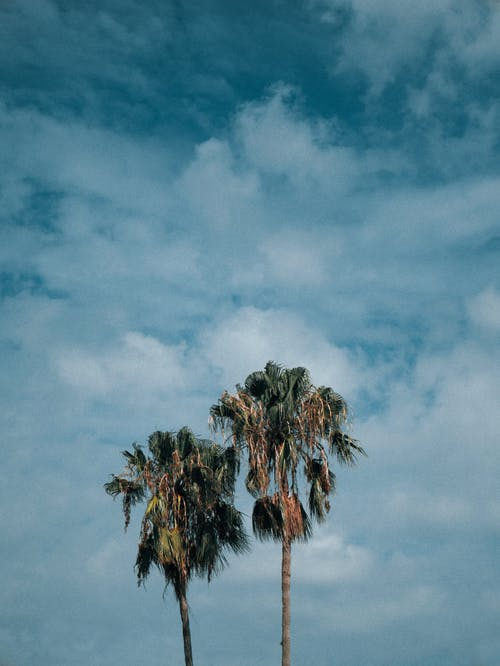 Free stock photo of aesthetic, afternoon, beach, cool