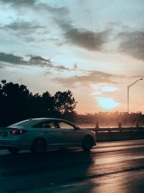 Foto stok gratis bersih, hujan, jalan, jembatan