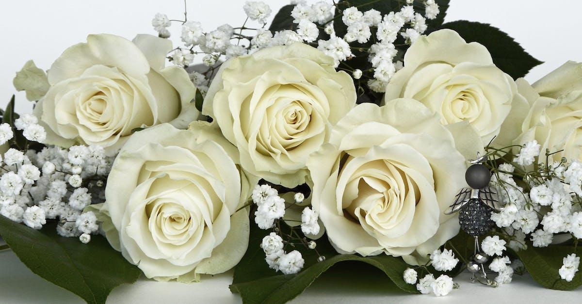 Белые розы открытка, ссср дедом морозом