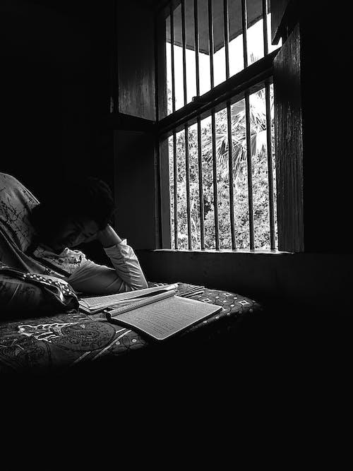 Fotobanka sbezplatnými fotkami na tému čítanie, čítanie knihy, okno