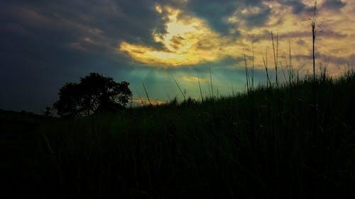 Fotobanka sbezplatnými fotkami na tému ľahký, mrak, obloha, slnečné svetlo