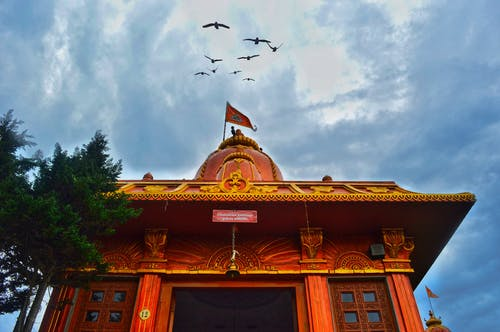 Fotobanka sbezplatnými fotkami na tému chrám, obloha, vtáky