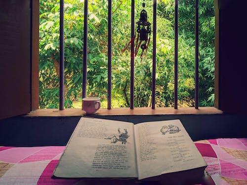 Fotobanka sbezplatnými fotkami na tému čierny čaj, kniha, okno