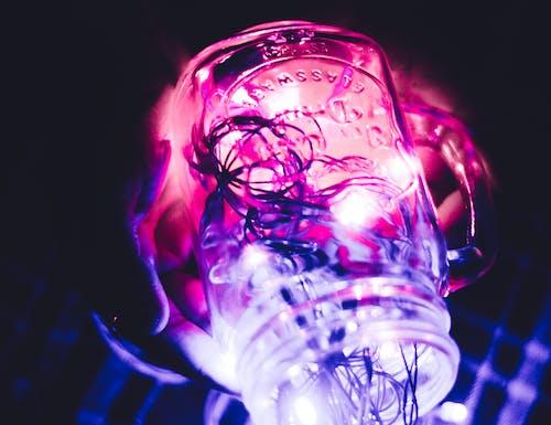 フェアリーライト, 夜, 電灯の無料の写真素材