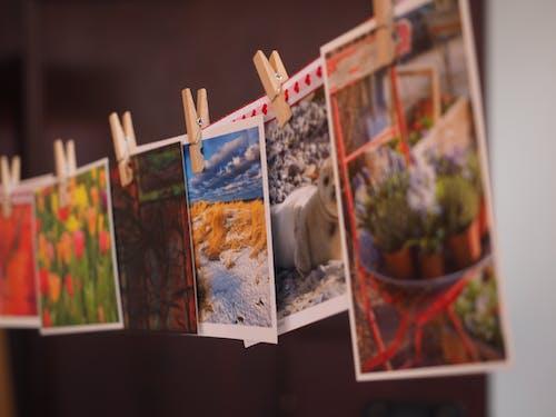 asılı, fotoğraflar, kartpostallar, mandal içeren Ücretsiz stok fotoğraf