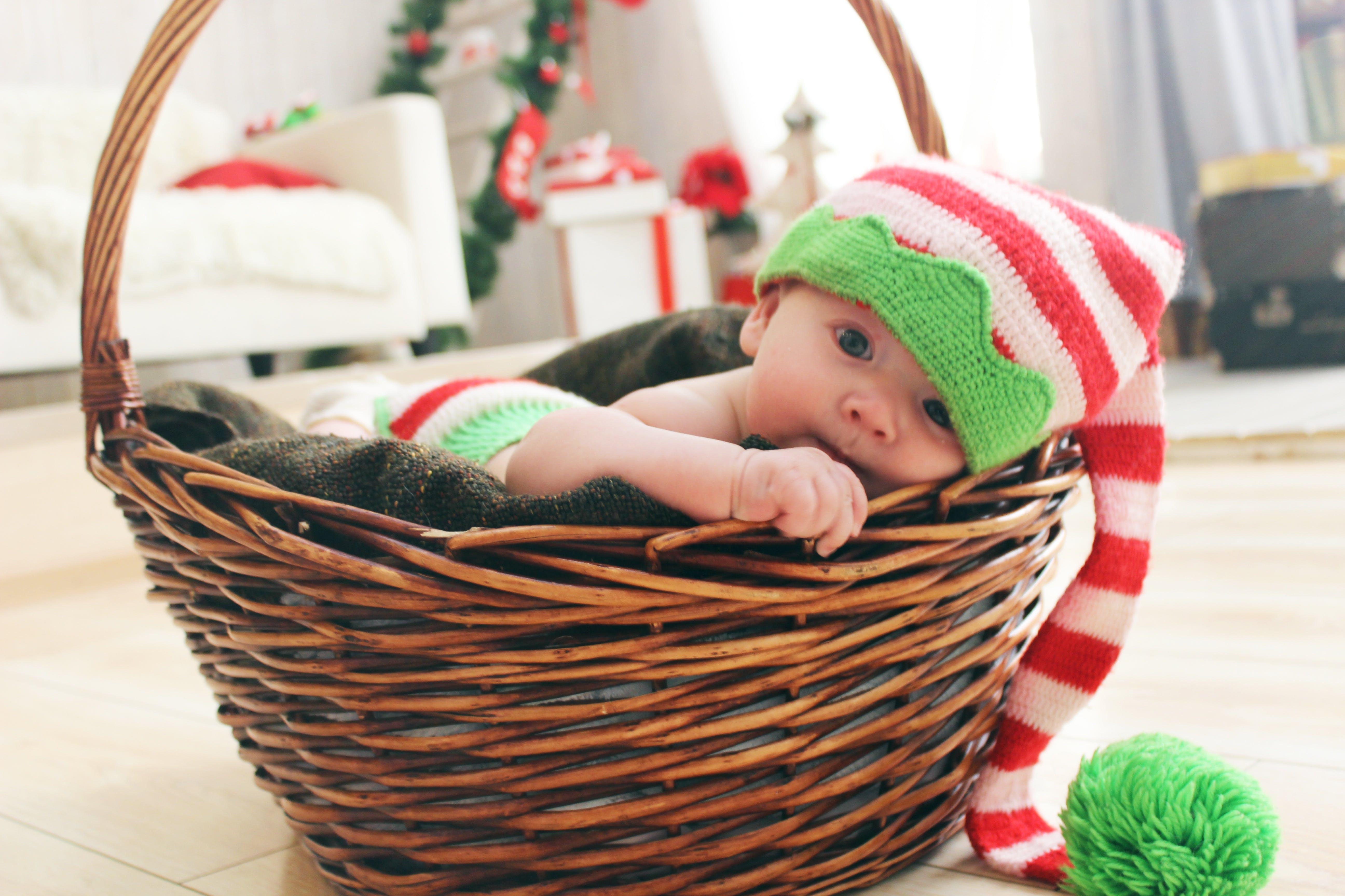 adorable, baby, basket