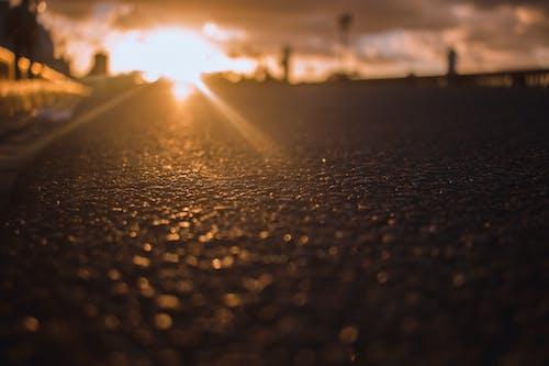 Gratis arkivbilde med fokus, solnedgang