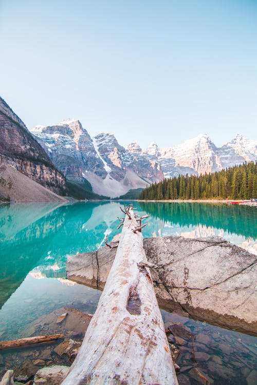 Foto stok gratis air, alam, Alberta, banff