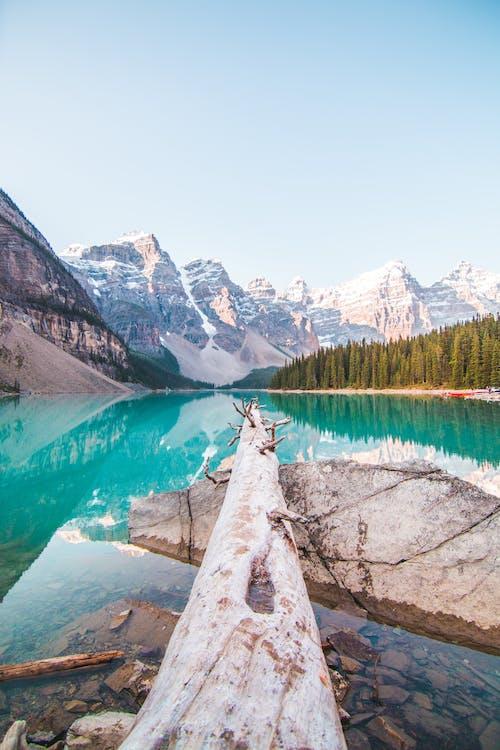 Fotos de stock gratuitas de agua, al aire libre, Alberta, alto