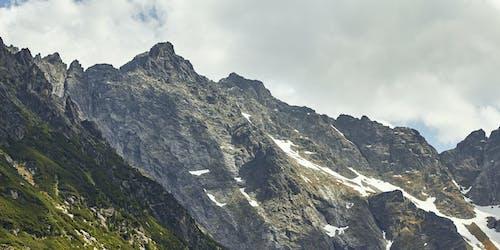 Foto d'estoc gratuïta de arbres, muntanya nevada, roca, verd