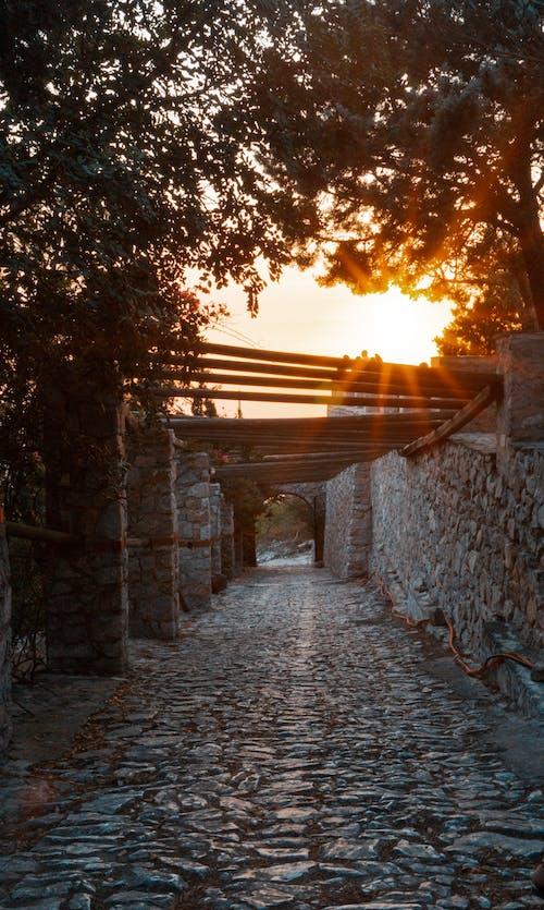 Fotos de stock gratuitas de camino de piedra, camino peatonal, camino sin asfaltar, destello solar
