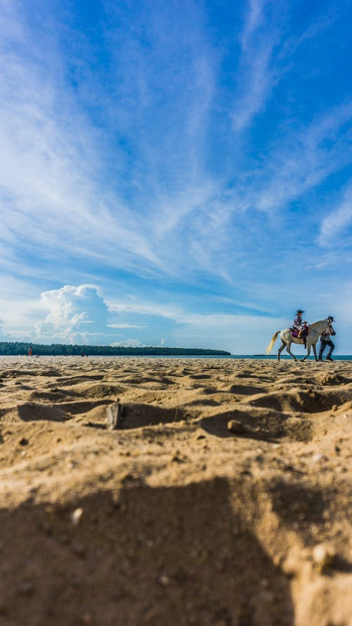 Gratis stockfoto met #hemel, #strand, #zand, paard