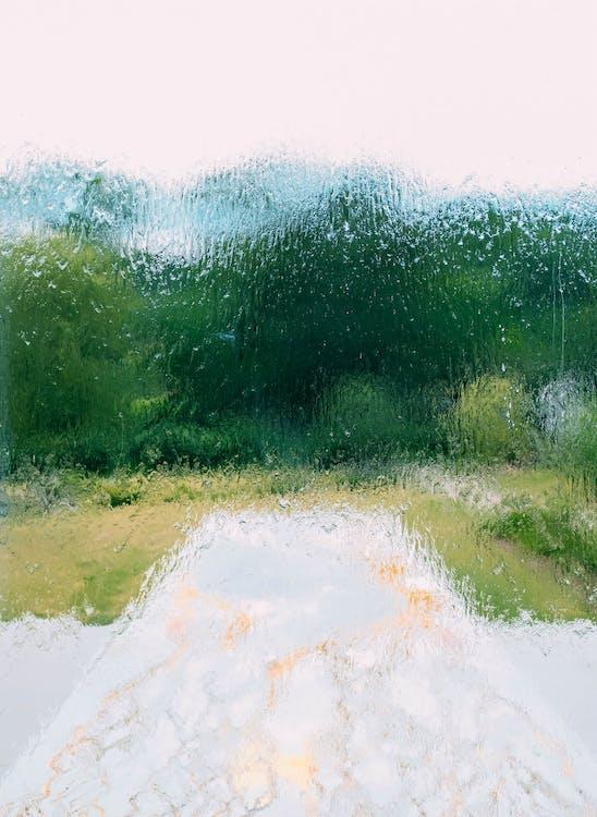 janela, molhado, úmido