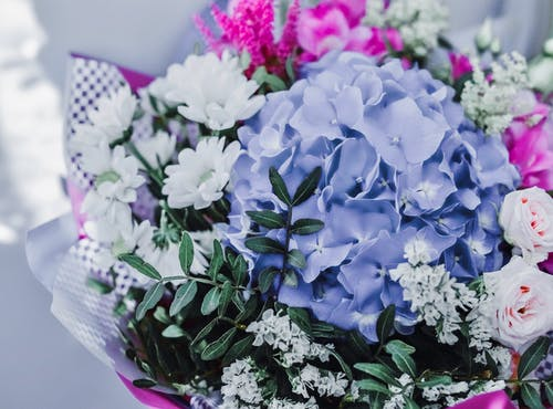 Gratis arkivbilde med blomster, blomsterbukett, bukett, sommerbukett
