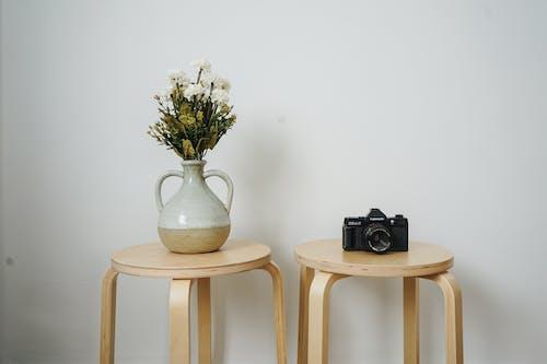 Foto profissional grátis de câmera, cômodo, dentro de casa, elegante
