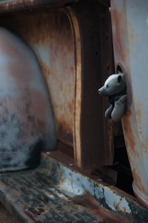 골동품, 곰, 낡은 것들, 테디 베어의 무료 스톡 사진