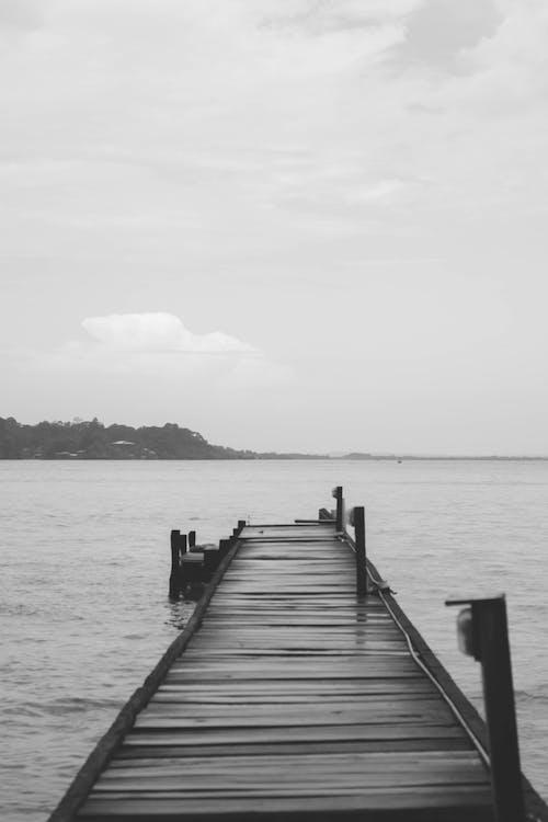 Základová fotografie zdarma na téma dřevo, modré vody, molo