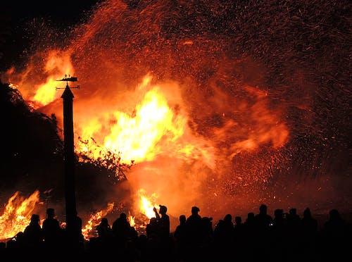 Kostenloses Stock Foto zu asche, bäume, brand, brennen