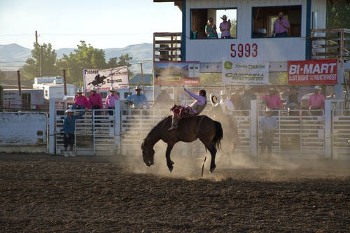 Photo of Man Doing Rodeo