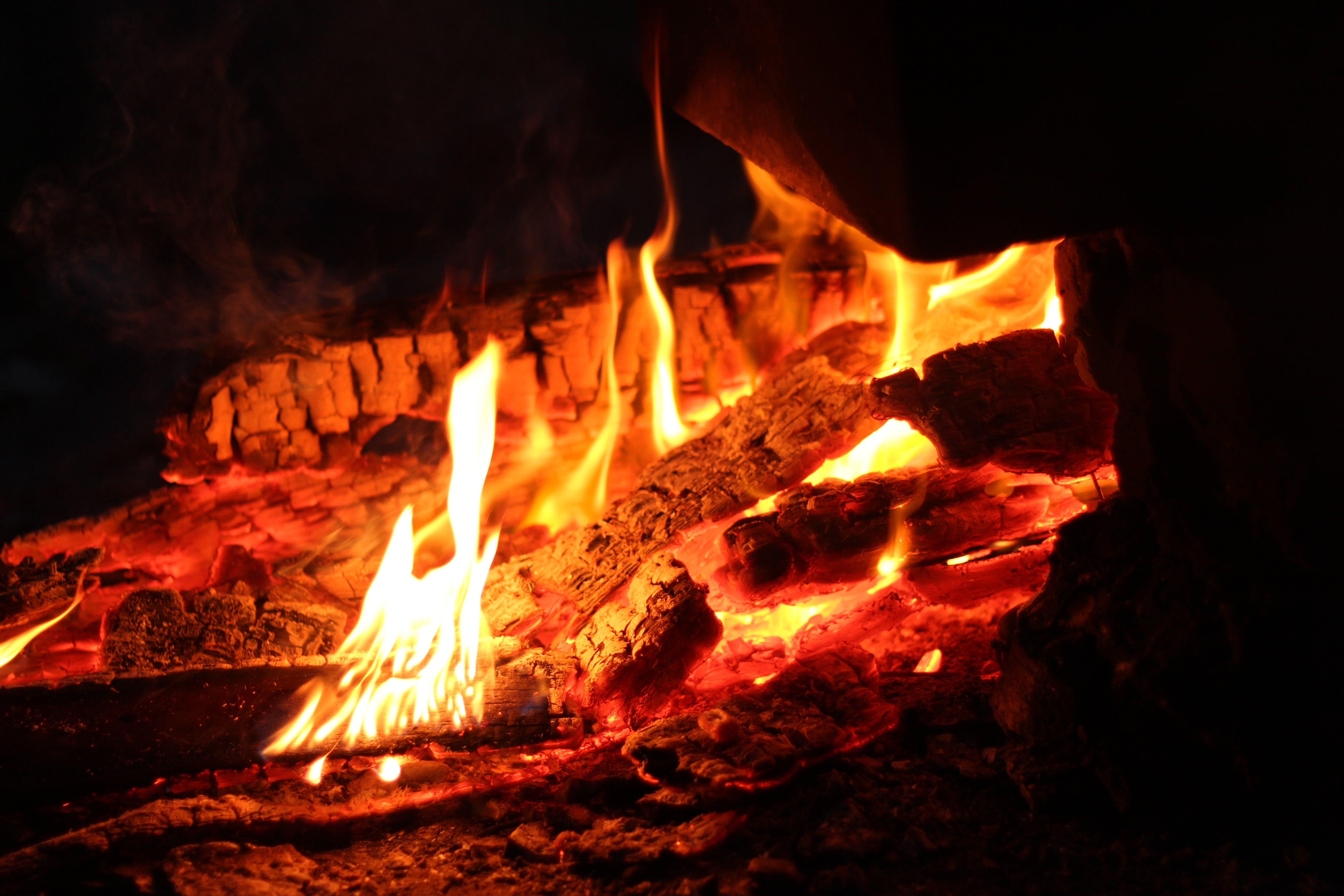 ash, bonfire, burning