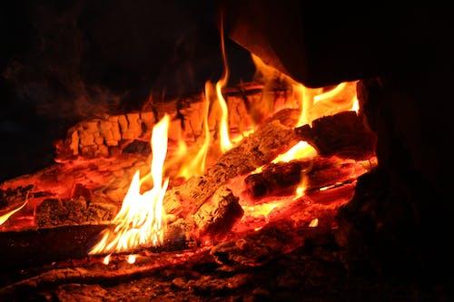 Gratis lagerfoto af bål, brand, brænde, brændt