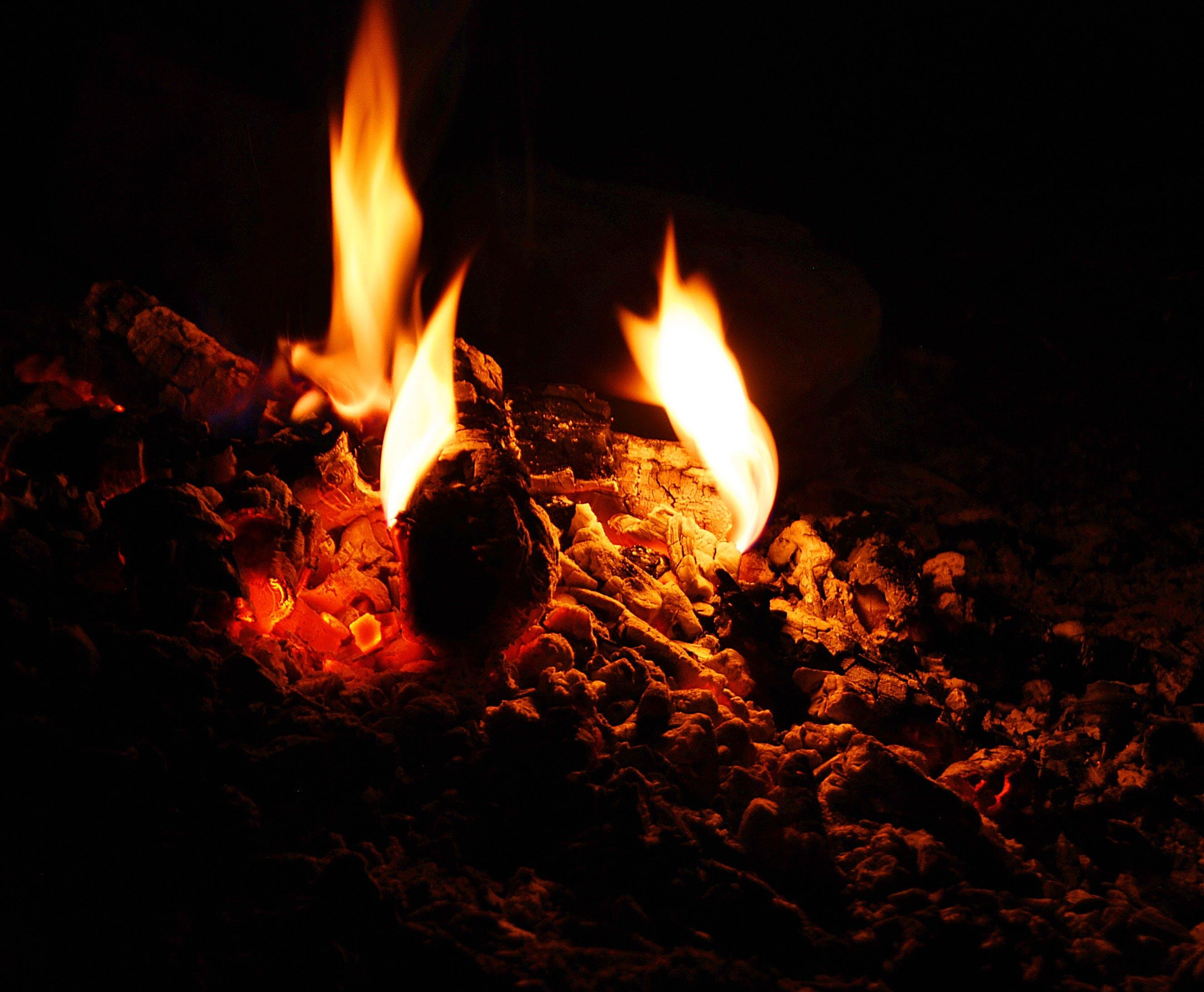 Foto d'estoc gratuïta de atractiu, calor, cremat, flames