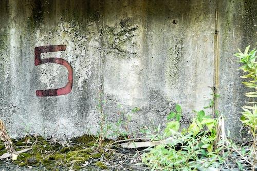 Free stock photo of concrete, decay, urban