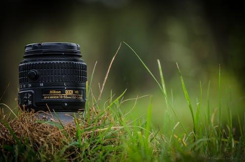 Gratis stockfoto met 18-55 mm lens, beeldverhouding, bokeh, burst-modus