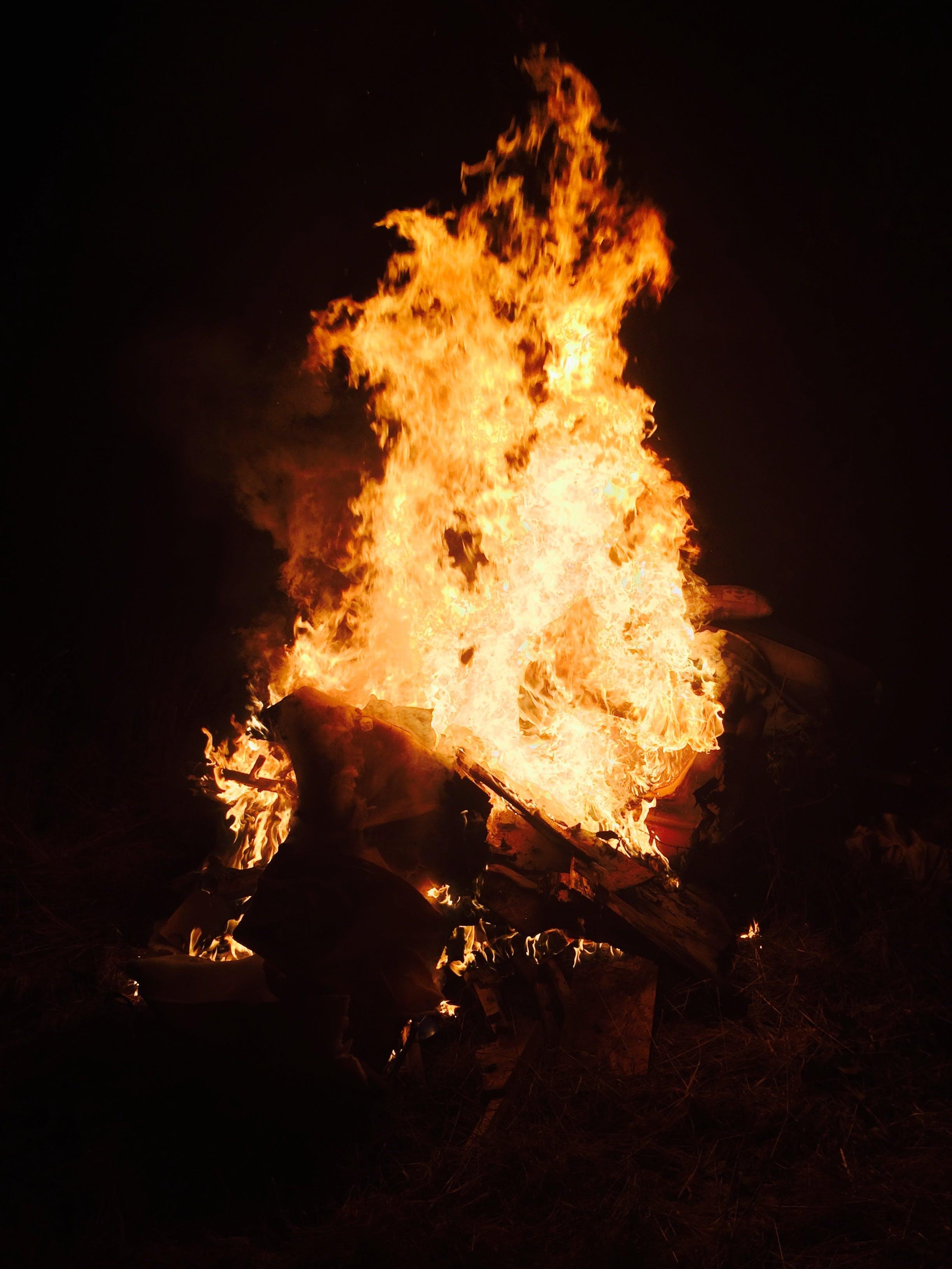 Free stock photo of fire, bonfire, blaze